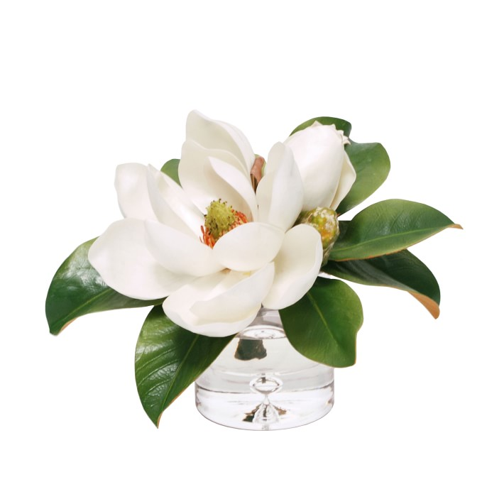 Faux Magnolias In Glass Vase Artificial Flower Arrangement Williams Sonoma