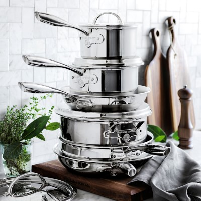 Williams Sonoma Signature Thermo Clad Stainless Steel 10